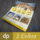 Real Estate Business Flyer | Volume 8 - GraphicRiver Item for Sale