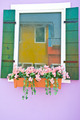colorful of artificial flower for window decoration - PhotoDune Item for Sale