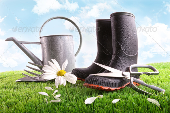 Boots with watering can and daisy in grass - Stock Photo - Images