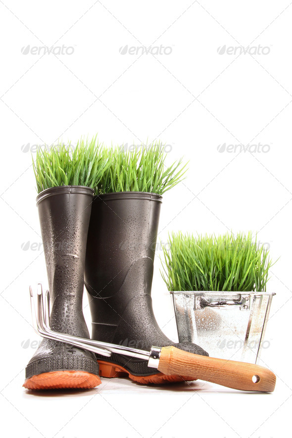 Rubber boots with grass in pot and tool - Stock Photo - Images