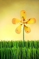 Multicolor windmill toy standing in the grass - PhotoDune Item for Sale