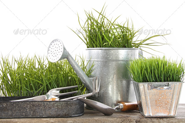 Garden tools and watering can with grass - Stock Photo - Images