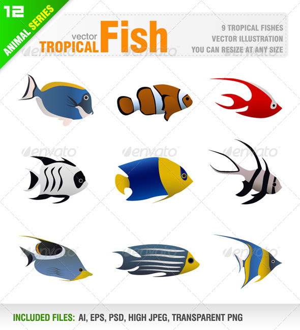GraphicRiver Tropical Fish Set 6584228