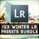 123 Winter Edition Pro Presets Bundle - GraphicRiver Item for Sale
