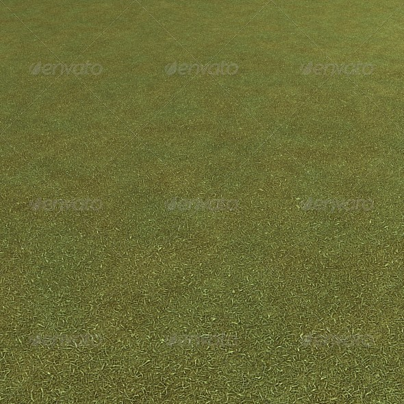 3DOcean Grass Seamless Ground Texture 6600184