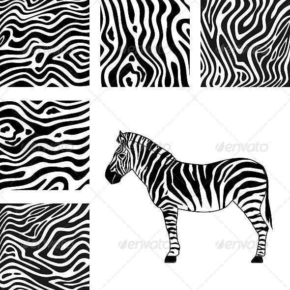 GraphicRiver Zebra and Texture of Zebra 6603865