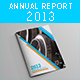 Annual Report 2013 - GraphicRiver Item for Sale