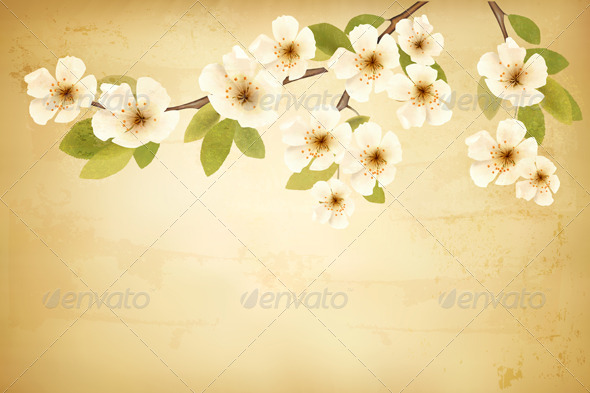 GraphicRiver Vintage Background with Blossoming Tree Brunch 6612560