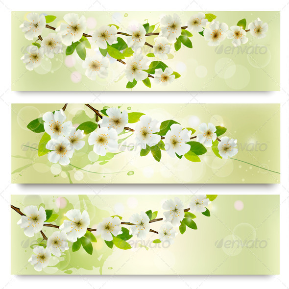 GraphicRiver Blossoming Tree Brunch 6612555