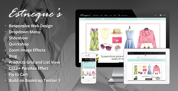 Responsive HTML Theme - Estneque - Fashion Retail