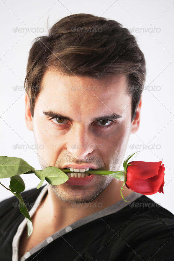 Man with a red rose in his mouth - Stock Photo - Images