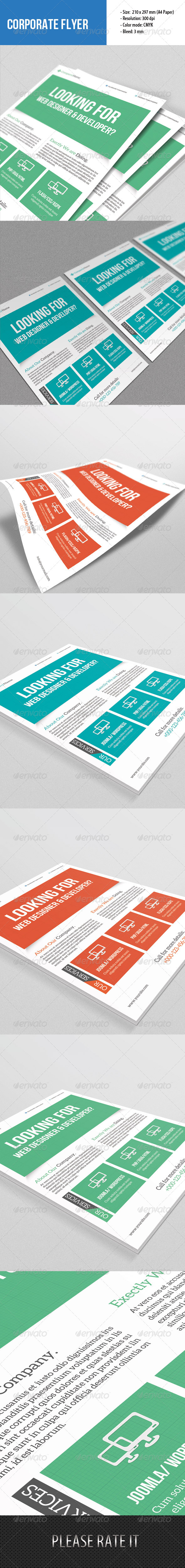 GraphicRiver Flyer Template for Web Designer 6645506