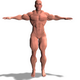 Bodybuilder Man - 3DOcean Item for Sale