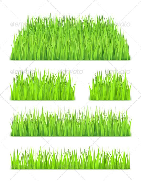 GraphicRiver Grass 6651044