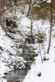 Small Cascade on a Mountain Stream - PhotoDune Item for Sale