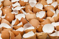 Broken eggshells - PhotoDune Item for Sale