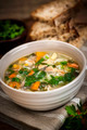 Chicken soup with rice and vegetables - PhotoDune Item for Sale