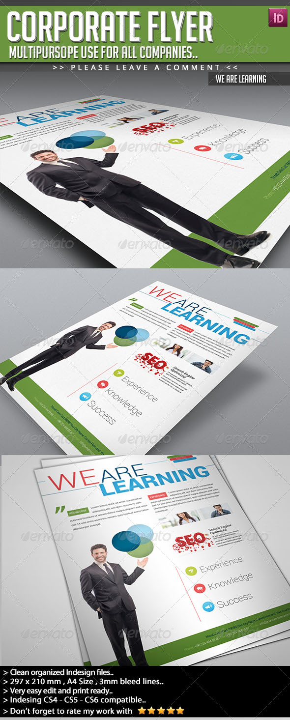 GraphicRiver Corporate Flyer We Are Learning 6663161