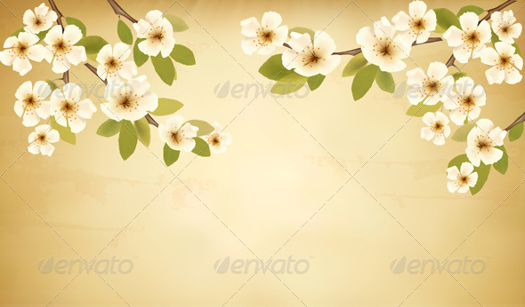 GraphicRiver Retro Background with Blossoming Tree Branch 6674502
