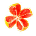 cut grapefruit - PhotoDune Item for Sale