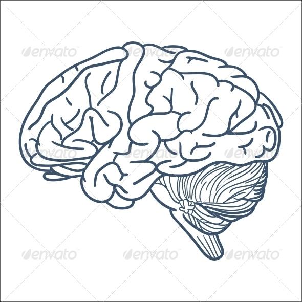 GraphicRiver Brain 6696415