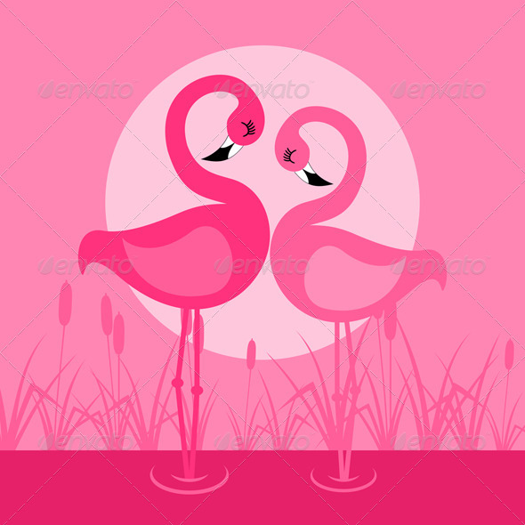 Flamingo - Animals Characters