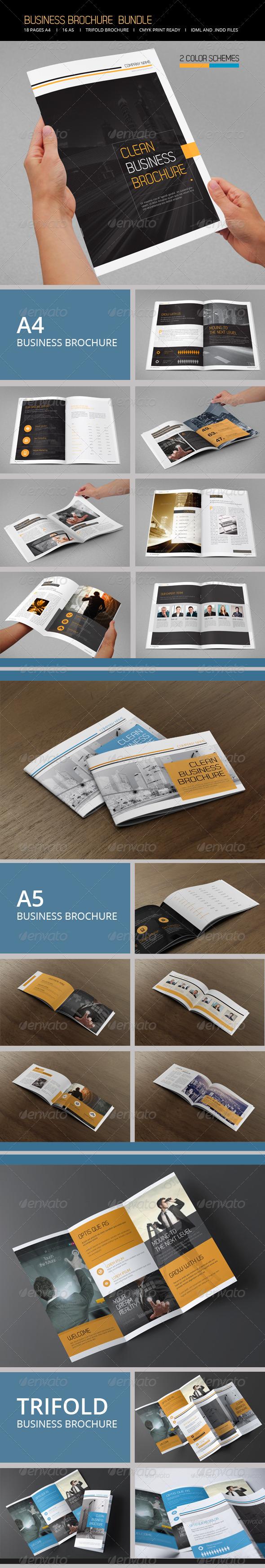 GraphicRiver Business Brochure Bundle 6701655