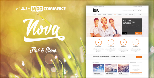 Nova - Flat & Clean Responsive Theme - Business Corporate
