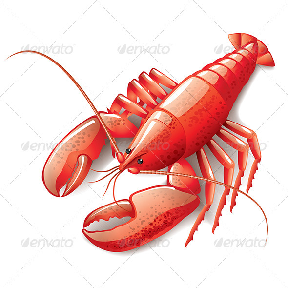 GraphicRiver Cooked Lobster 6725201