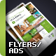Business Flyer/Ad Vol. 11 - GraphicRiver Item for Sale