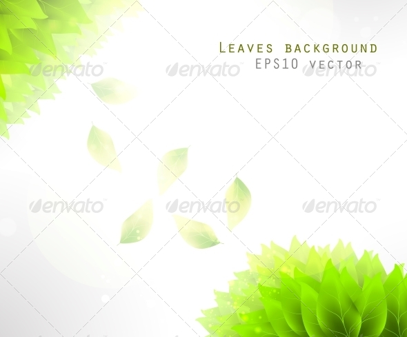 GraphicRiver Green Leaves Background 6740097