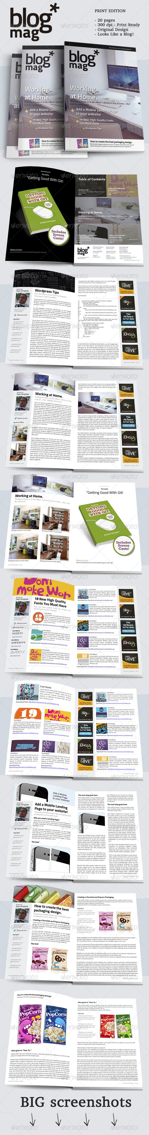 GraphicRiver BlogMag Print Magazine that Looks Like a Blog 6754558