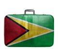 Vintage travel bag with flag of Guyana - PhotoDune Item for Sale