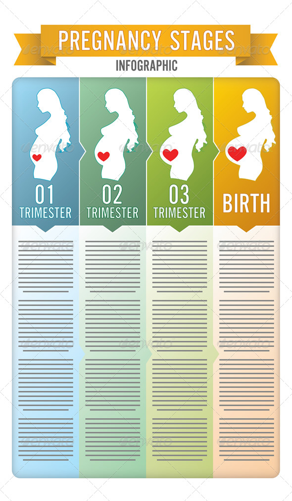 GraphicRiver Pregnancy Stages 6757992