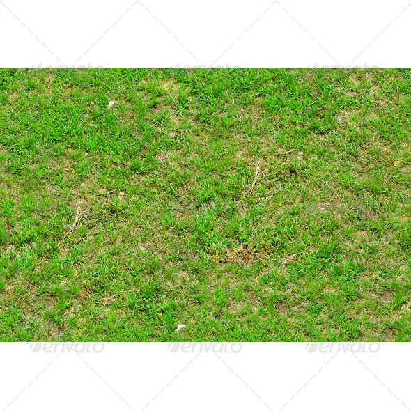 GraphicRiver Tileable Newly Planted Grass Texture 6790462
