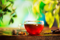 Cup of Tea over Blurred Nature Green background. Herbal Tea - PhotoDune Item for Sale