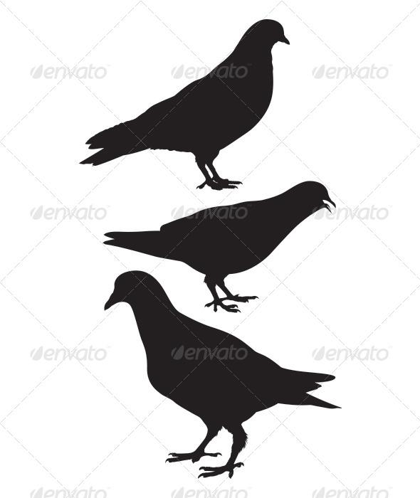 GraphicRiver Pigeon Silhouette 6796788
