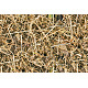 Tileable Wooden Shavings Texture - GraphicRiver Item for Sale