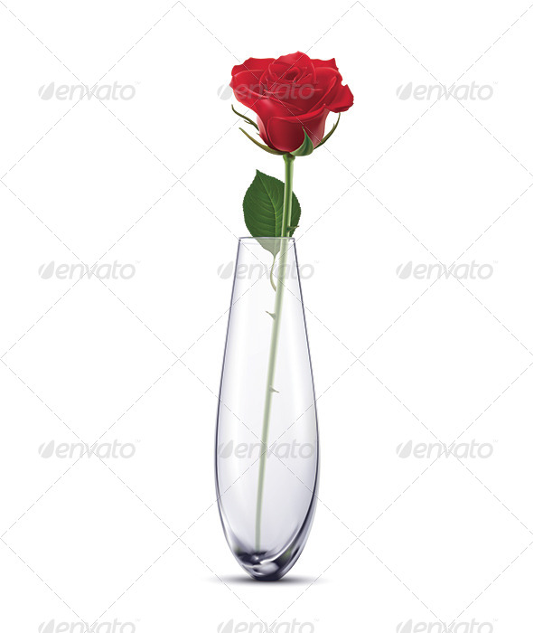 GraphicRiver Rose in a Vase 6798179