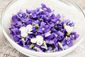 Edible violets in bowl - PhotoDune Item for Sale