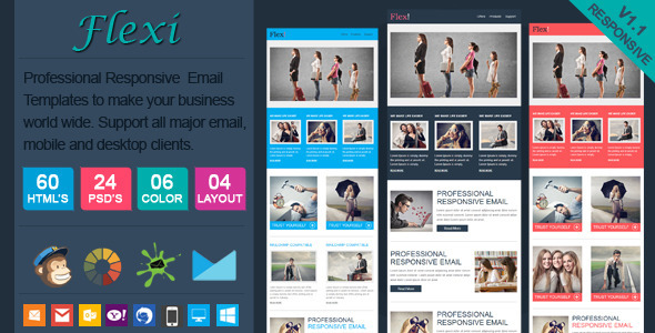 ThemeForest Flexi Professional Responsive Email Template 6801217