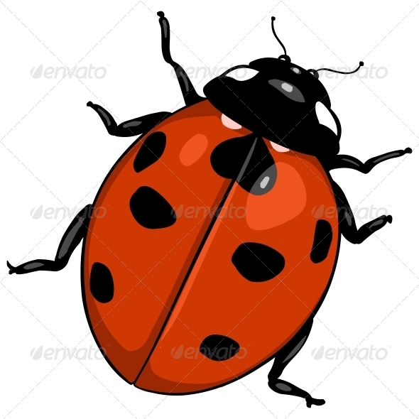 GraphicRiver Cartoon Ladybug 6805275
