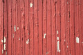 Peeling paint background - PhotoDune Item for Sale