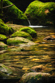 Moss covered rocks near cascade in rains forest. - PhotoDune Item for Sale