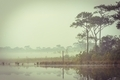 Retro tranquility by a lake at morning. - PhotoDune Item for Sale