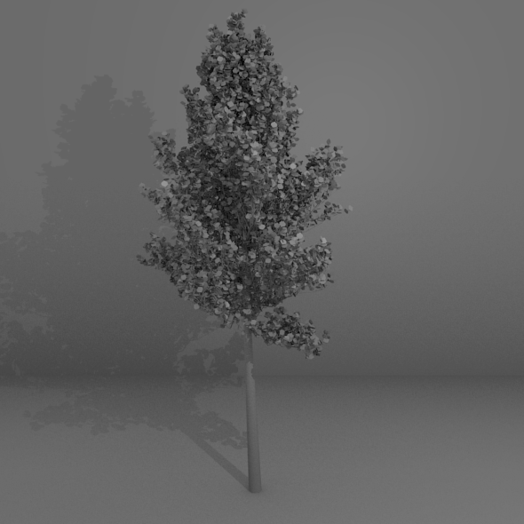 3DOcean High-Poly Generic Tree 6855615