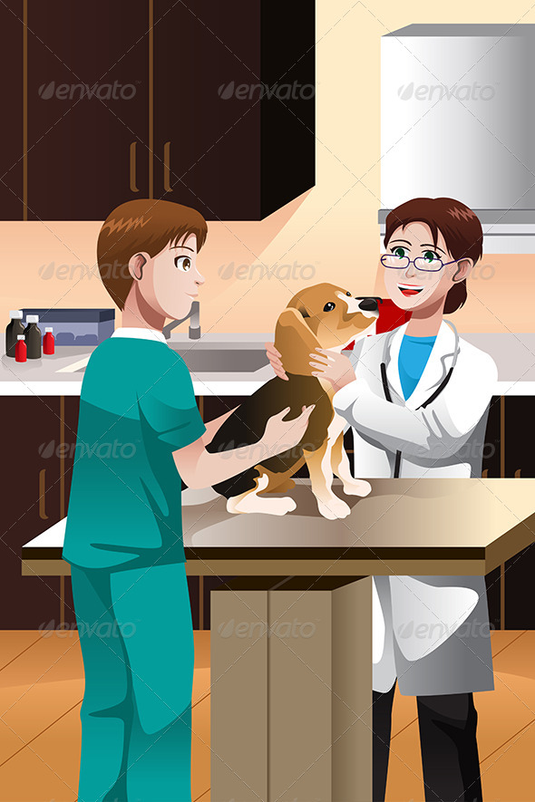 GraphicRiver Veterinarian Examining a Dog 6855816