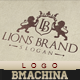 Lions Brand Logo Template - GraphicRiver Item for Sale