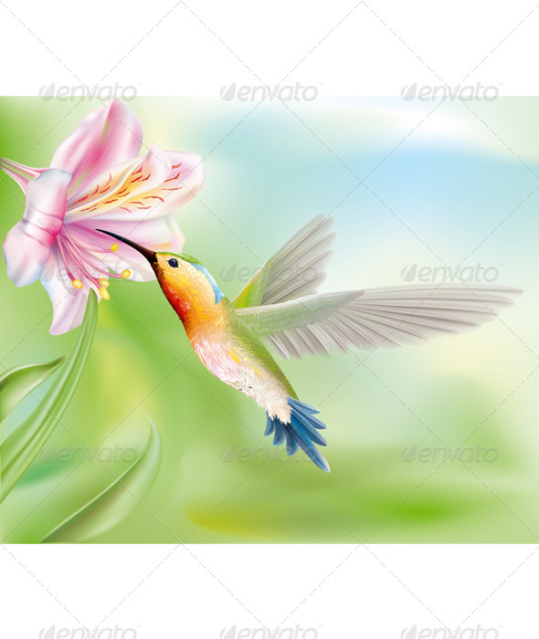 GraphicRiver Hummingbird in the Flower 6860136