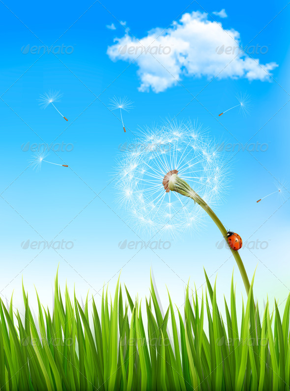 GraphicRiver Nature Background with a Dandelion and a Ladybug 6862824